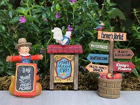 Amazon com : Fairy Garden & DollHouse Build a Fairy Garden Miniature