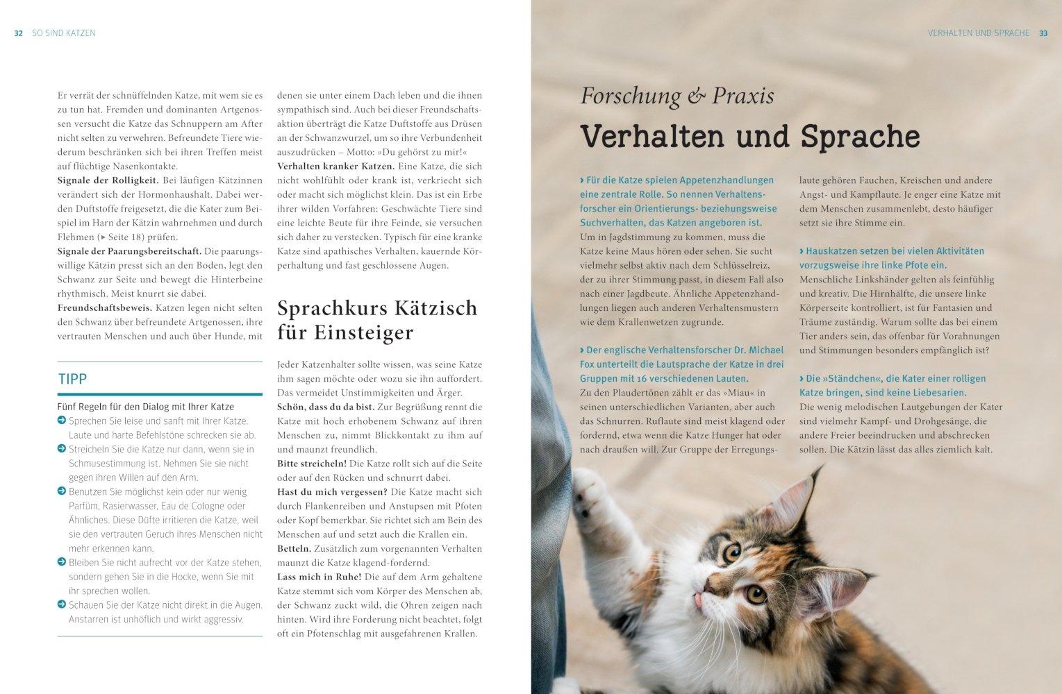 Praxishandbuch Katzen: Amazon.de: Gerd Ludwig: Bücher