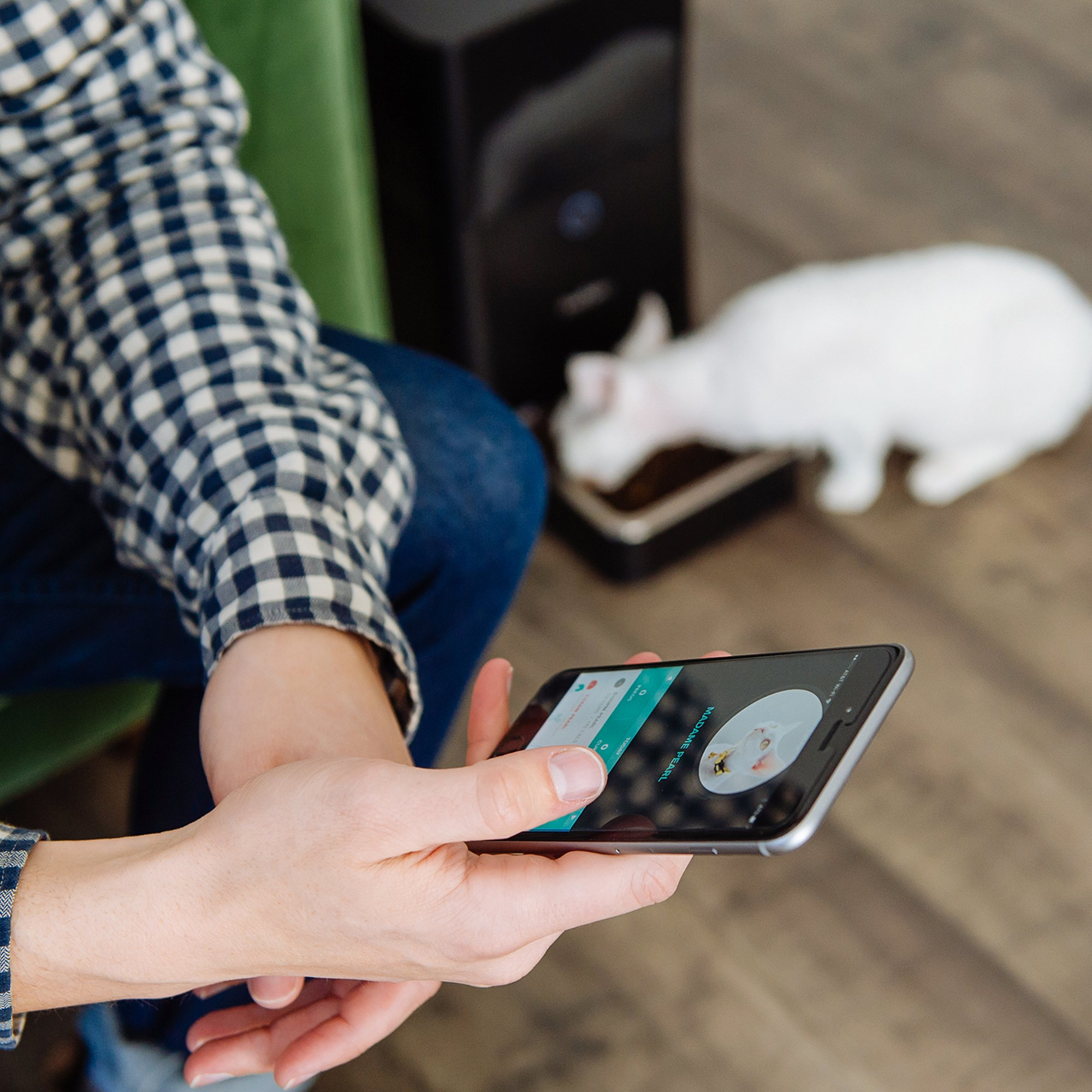 Petnet SmartFeeder, Automatic Pet Feeder for Cats and Dogs, Works with Amazon Alexa by Petnet (Image #7)