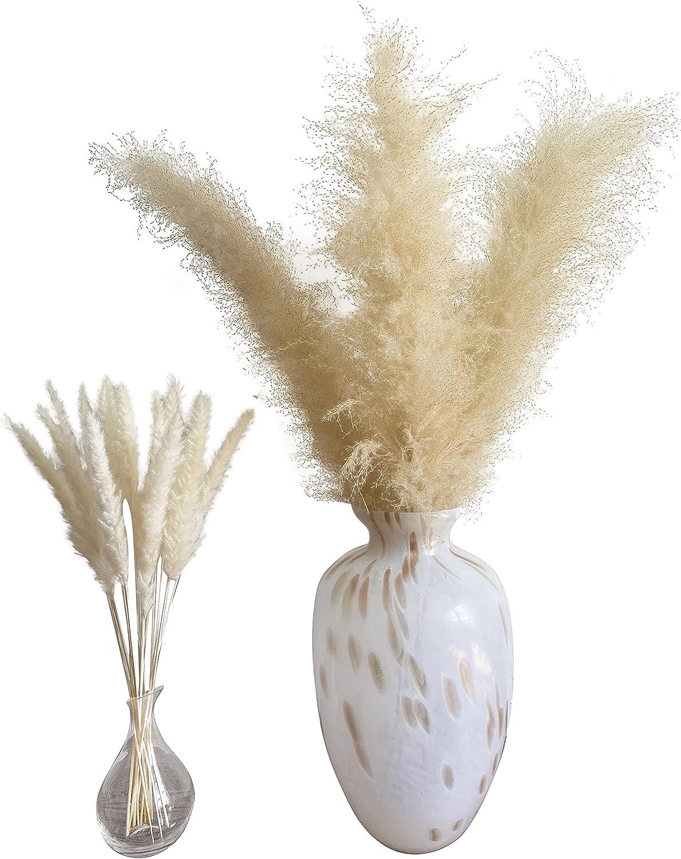 Homenivia's Fluffy Pampas Grass - 4 Beige Large Pampas Grass Stems 46