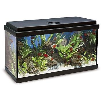 ICA KDB64 Kit Interior Aqualed con Filtro Biopower, Negro: Amazon.es: Productos para mascotas
