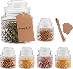 20oz Glass Food Storage Canisters Jars with Tight Lids for Kitchen or Bathroom ~ Food,cookie,cracker, Storage Containers, Set of 6