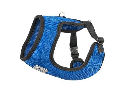 Amazon.com : RC Pet Products Cirque Soft Walking 10 to 20-Pound Dog