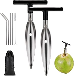 2 Pack Coconut Opener with 4 Reusable Straws & 2 Bush, Food Grade Stainless Steel Coco Nut Bottle Opener Tool for Fresh, Mature Coconut, Safe and Convenient Coco Drill