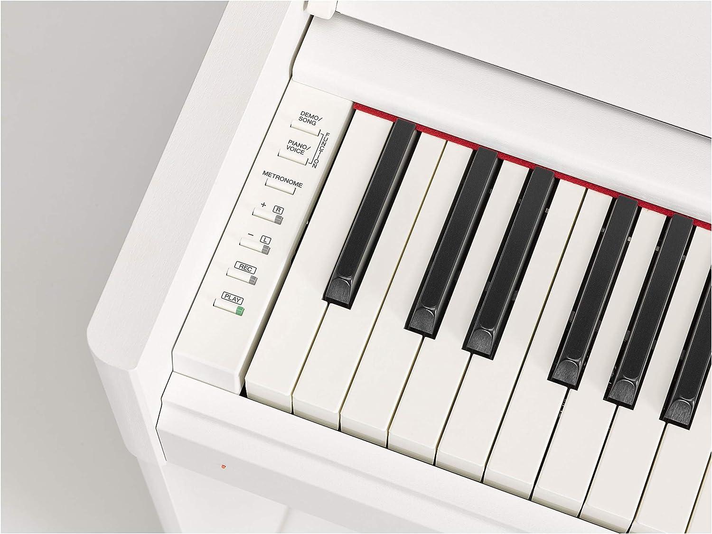 YDP-S54 WH: Amazon.es: Instrumentos musicales