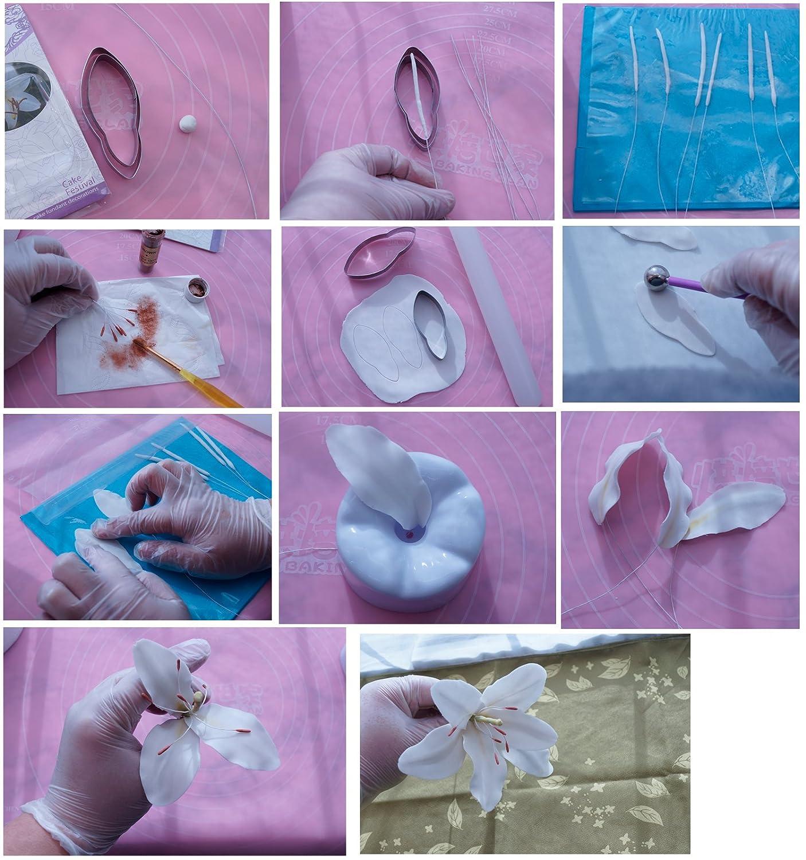 Garwarm 11 unids Conjunto de Flor de La Peon/ía Decoraci/ón Fondant Cake Herramientas de decoraci/ón de Pasteles Cortadores Cortador