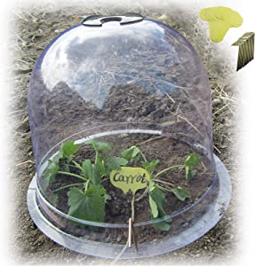 "SYITCUN 6Pack Protective Garden Cloche 10""(Dia.) x7.5(Height) Reusable Plastic Plant Bell Cover Plant Protector Cover for Season extention with Ground Securing Pegs"