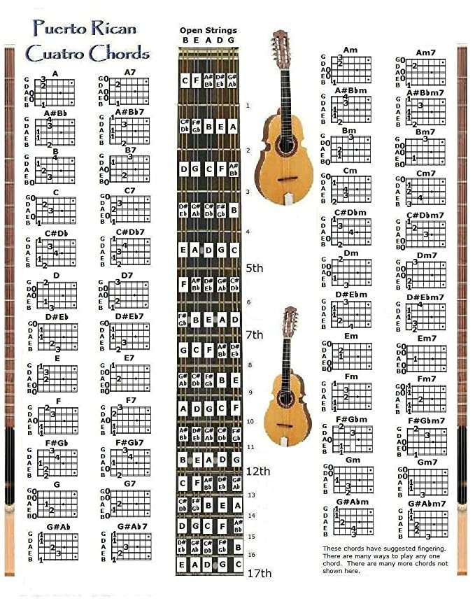 Amazon Puerto Rican Cuatro Chords Chart Musical Instruments