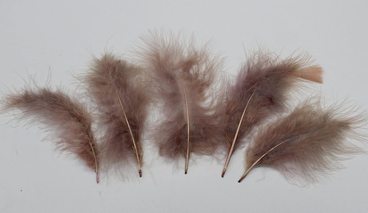 "WINE for Crafts// Halloween Costumes 30 Pcs MARABOU PLUMAGE Feathers 2-5/"" Color"