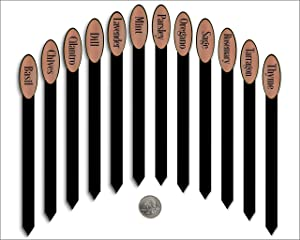 Red Tail Crafters Herb Garden Plant Markers Laser Etched Metallic Oval Stick Style 12/Set 08in Brushed Copper/Black