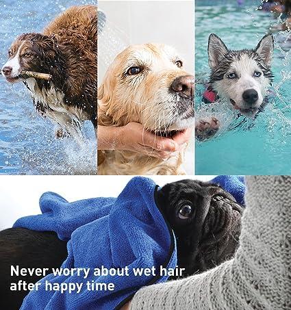 GiBot Toallas para Perro, Secado rápido de microfibra y Hidrófugo Toalla seca para baño Toalla Absorbente Súper Suave para Perros y Gatos, Pequeña, 36cm, ...