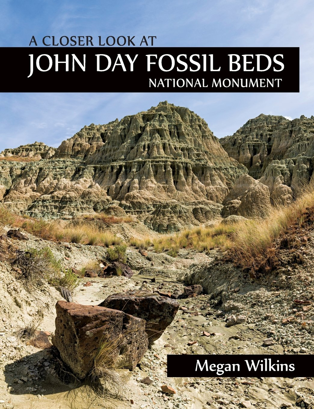 Download A Closer Look at John Day Fossil Beds National Monument ebook