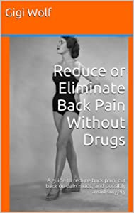 Reduce or Eliminate Back Pain Without Drugs: A guide to reduce back pain, cut back on pain meds, and possibly avoid surgery