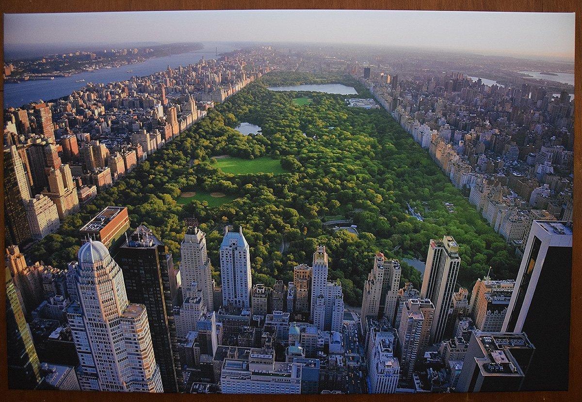 ciudad, Nueva York, Manhatan, Central Park, rascacielos hecho a mano en Alemania colgar y disfrutar Cuadro ciudad !Manhattan/_Central Park 80 x 12cm sobre mural con marco cu/ña de madera Simplemente desempacar