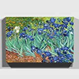 Big Box Art Print 20 x 14 Inch (50 x 35 cm) Vincent Van Gogh Iris Irises Flowers-Canvas Wall Art Picture Ready to Hang, Wood, Multi-Colour, 50 x 35 x 3 cm