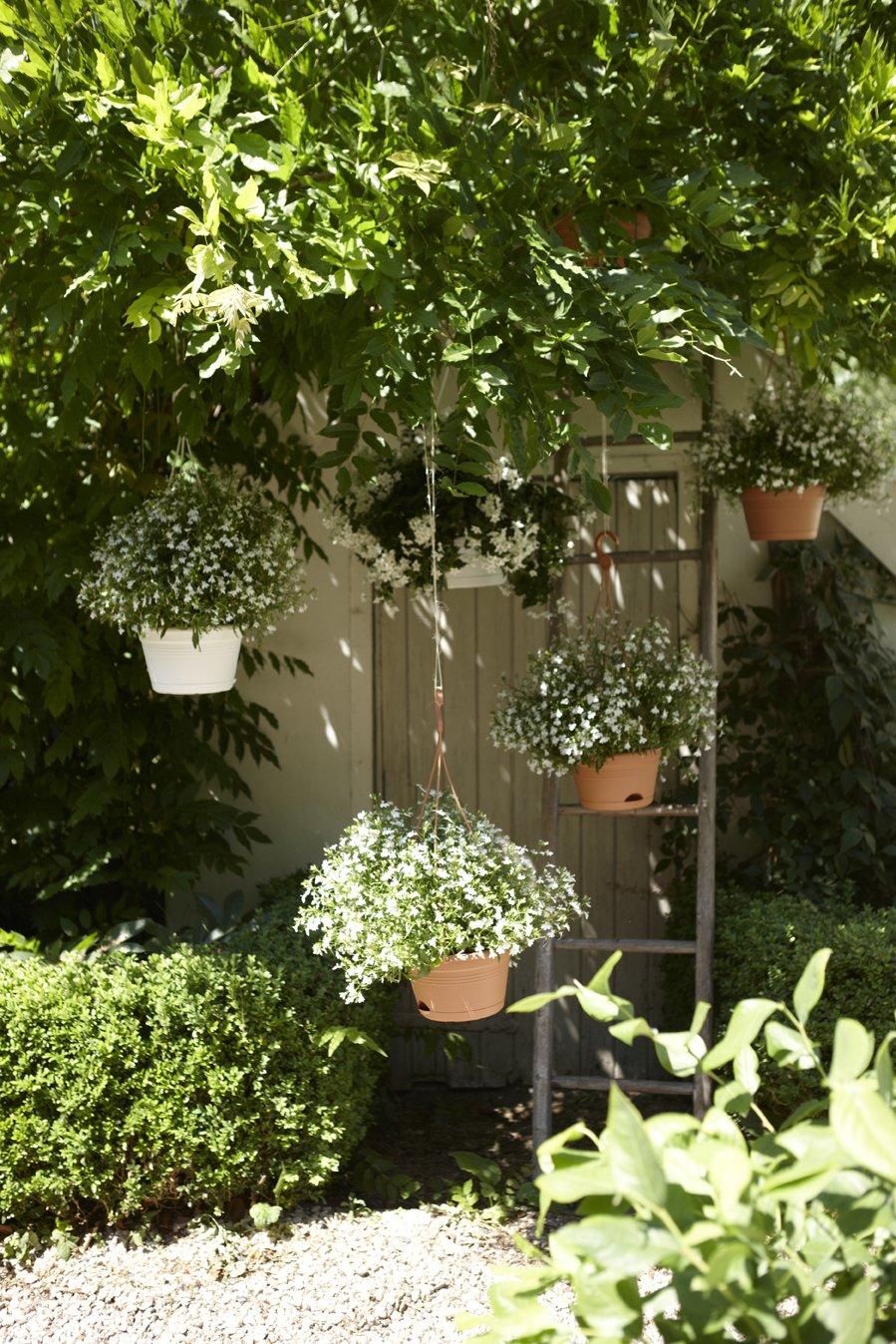 Elho Green Basics Hanging Basket Jardinera, 5.8 litros, Negro, 27 ...