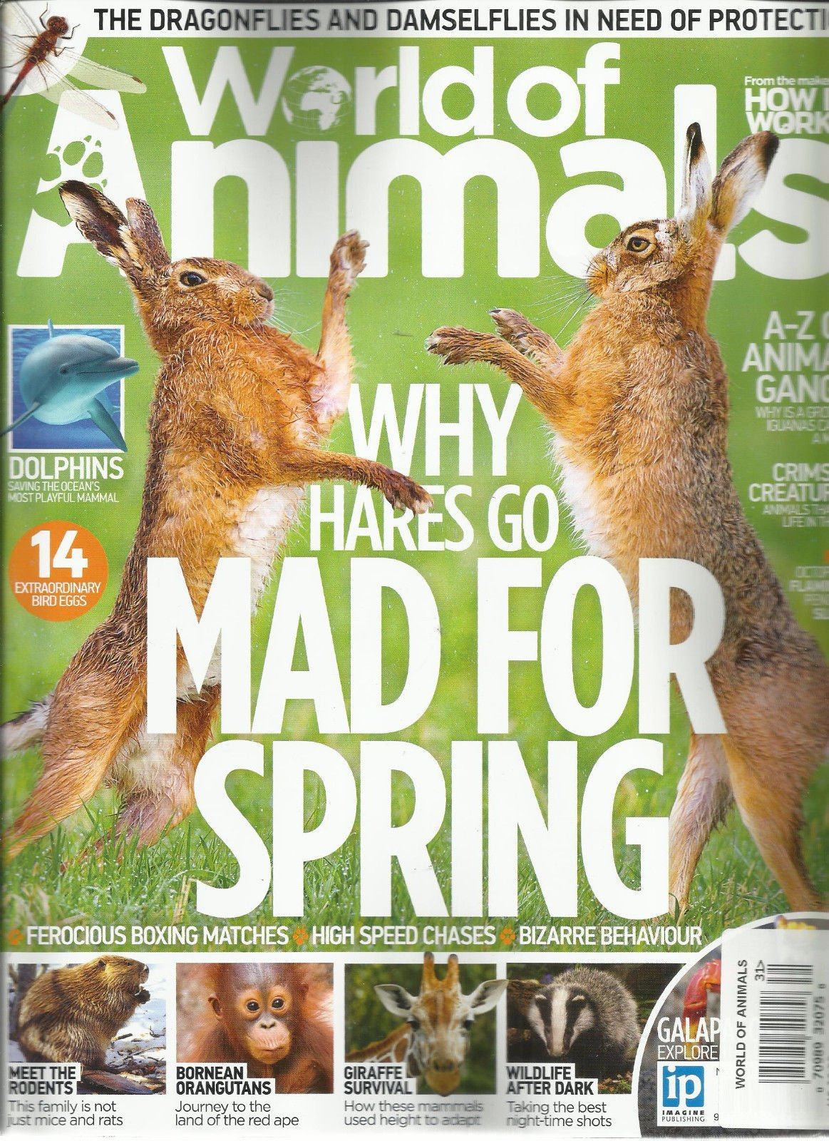 HOW IT WORKS/WORLD OF ANIMALS WHY HARES GO MAD FOR SPRING, 2016 ISSUE, 31