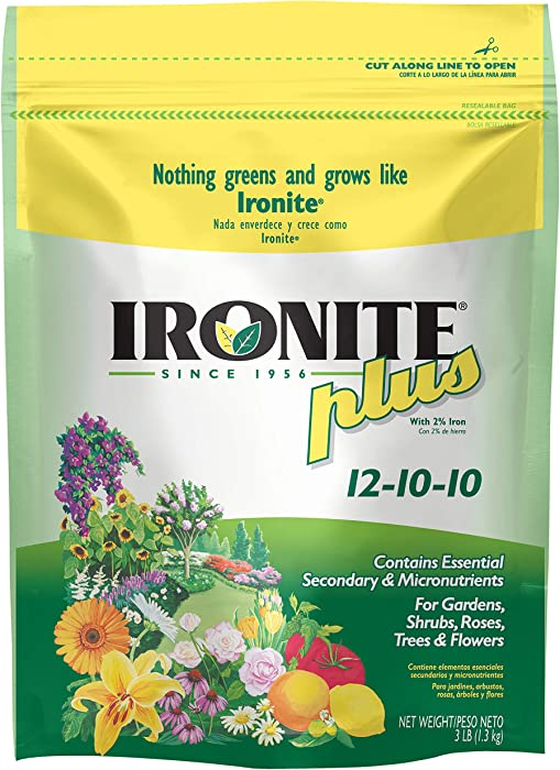Top 10 Plant Food Iron