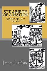 Stillbirth of a Nation Kindle Edition