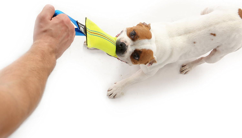 MEDIUM Firehose dog tug toy
