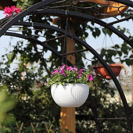 Galileo Casa 2191246 Cepillo,