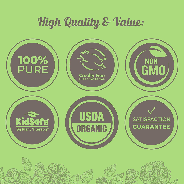Plant Therapy Usda Certified Organic Citronella Beauty Barn Kid Body Oil Essential 100 Pure Undiluted Therapeutic Grade 10 Ml 1 3 Oz Scented Oils