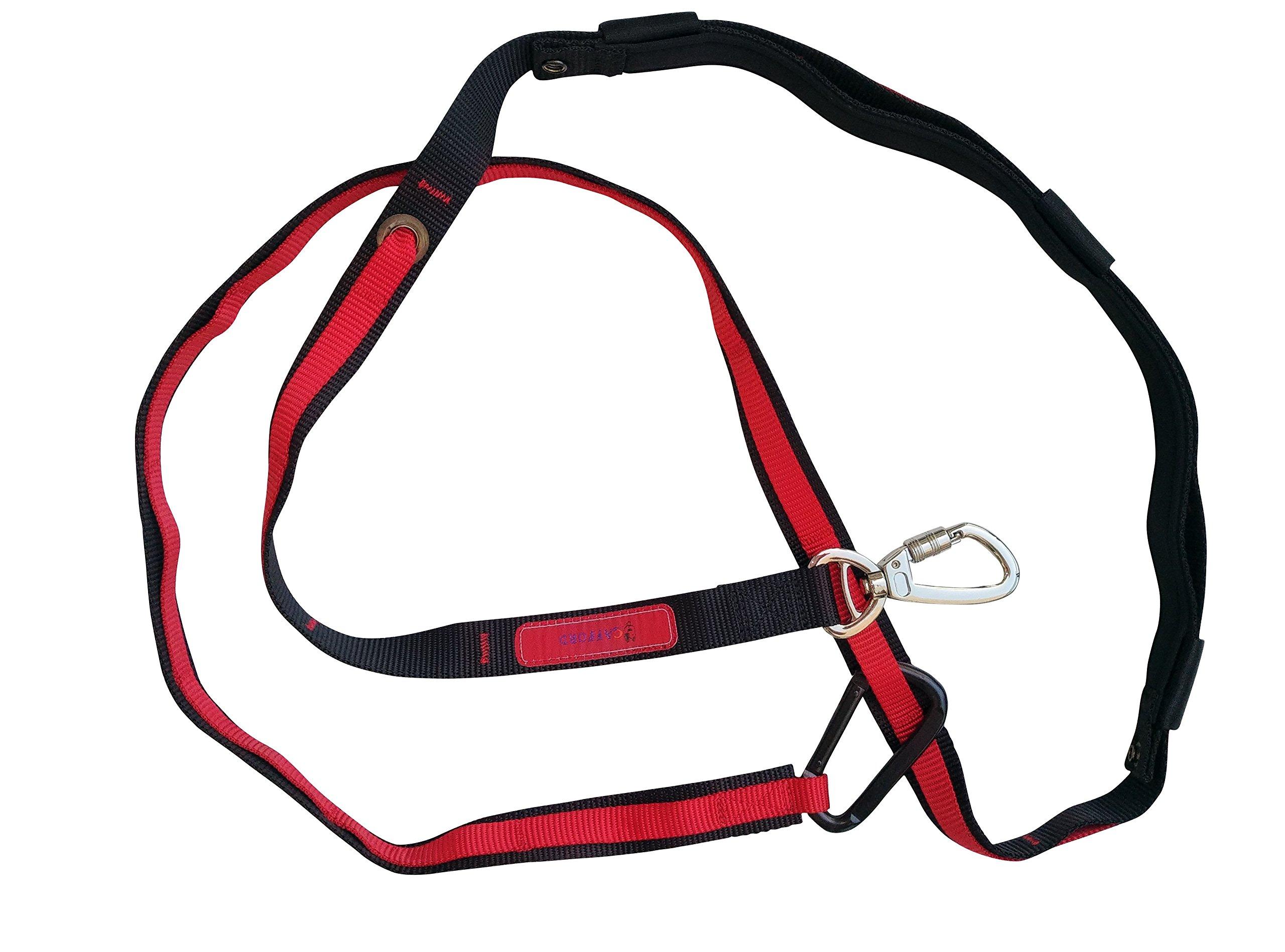 Cafford Multifunctional 6-in-1 Hands Free Dog Leash - Sturdy Clip - Heavy Duty Dog Training Leash (Red)