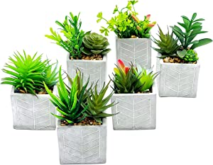 Artificial Succulent Plants potted - Set of 6 - Faux Succulents Plans in Pots For Home ore Office Desk, Bathroom, Bedroom and Kitchen with Desert Greens Detailed Leaves, That are Lifelike.