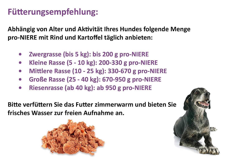 Ungewöhnlich Wo Ist Niere Bilder - Anatomie Von Menschlichen ...