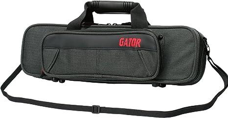 Gator GL-FLUTE-A - Estuche para flauta travesera, color negro: Amazon.es: Instrumentos musicales
