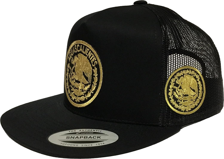 RIELEROS DE AGUASCALIENTES Baseball  CAP Color Black