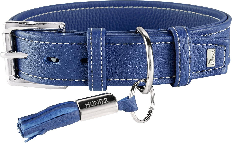 Hunter Cannes piel cuello color azul, 49 - 57 cm, 3.5 cm de ancho