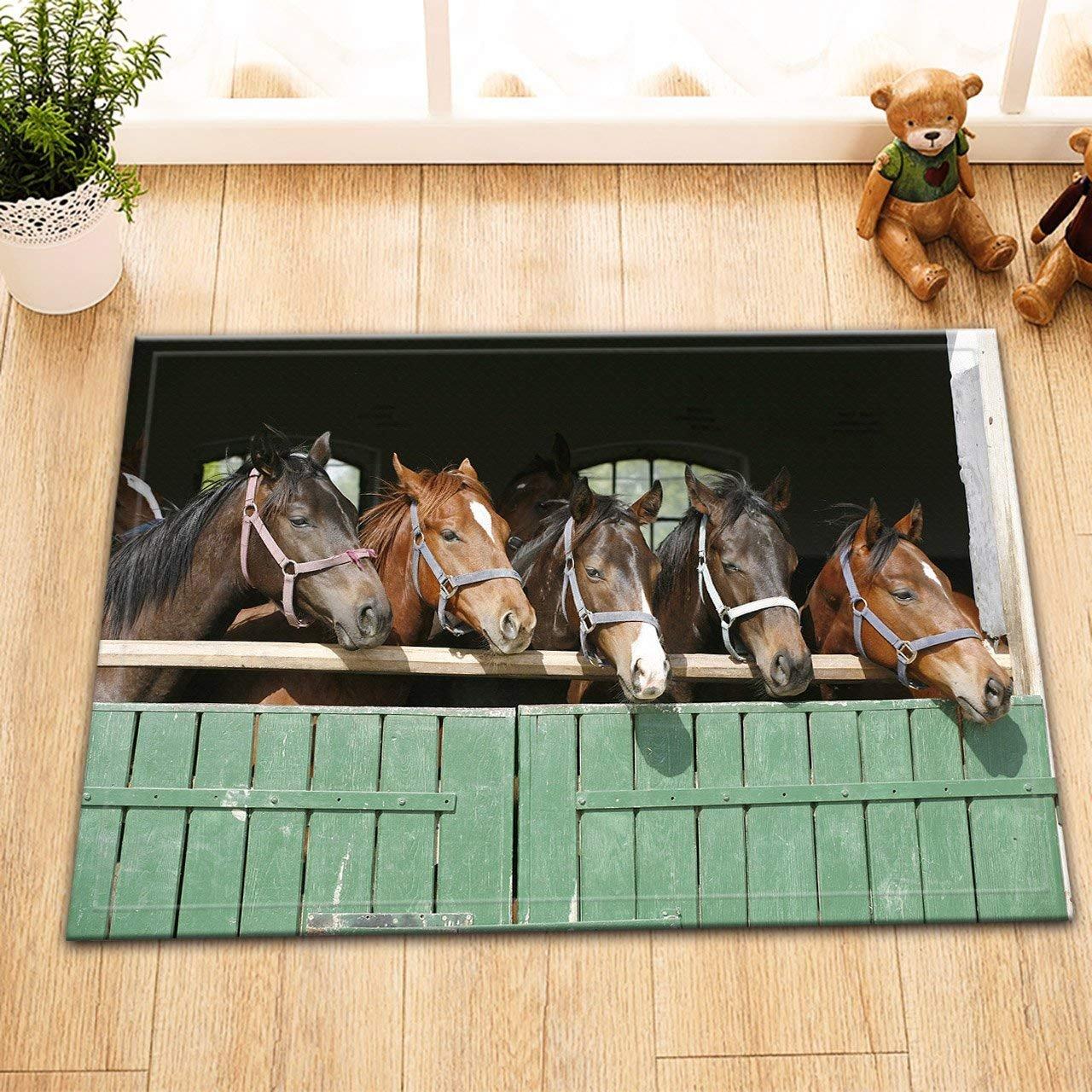 HXY-270 V2220 A Caballo Animal Caballo Cobertizos Lavable Alfombrilla para Puerta Accesorio de Cocina Dormitorio Cuarto de baño 60 x 40 cm: Amazon.es: Hogar