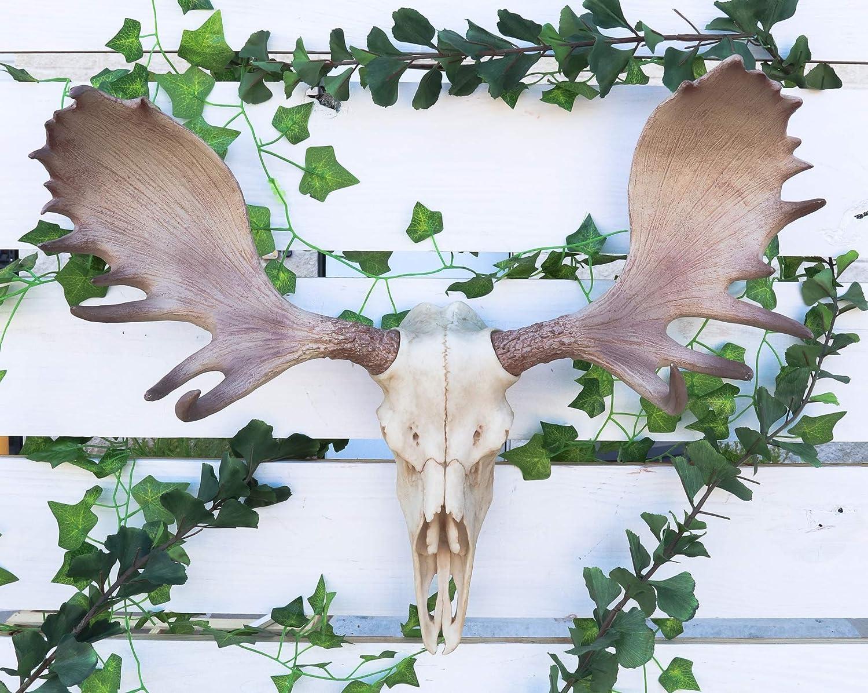 "Ebros Czar North American Bull Moose Skull Wall Decor 22""Wide Wall Mount Plaque Sculpture Figurine"