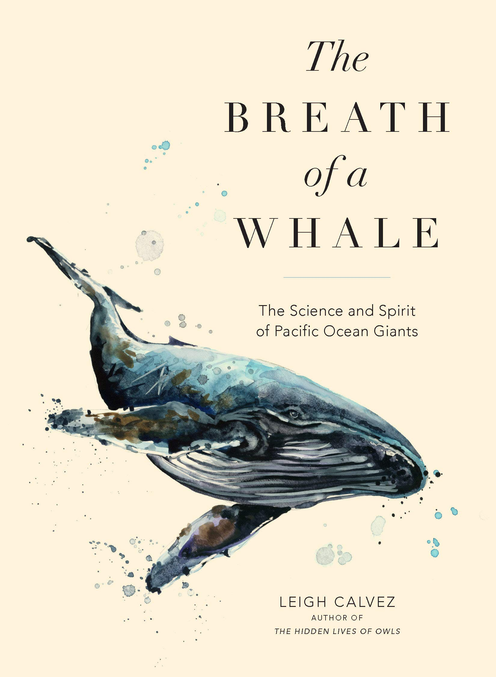 The Breath of a Whale The Science and Spirit of Pacific Ocean Giants