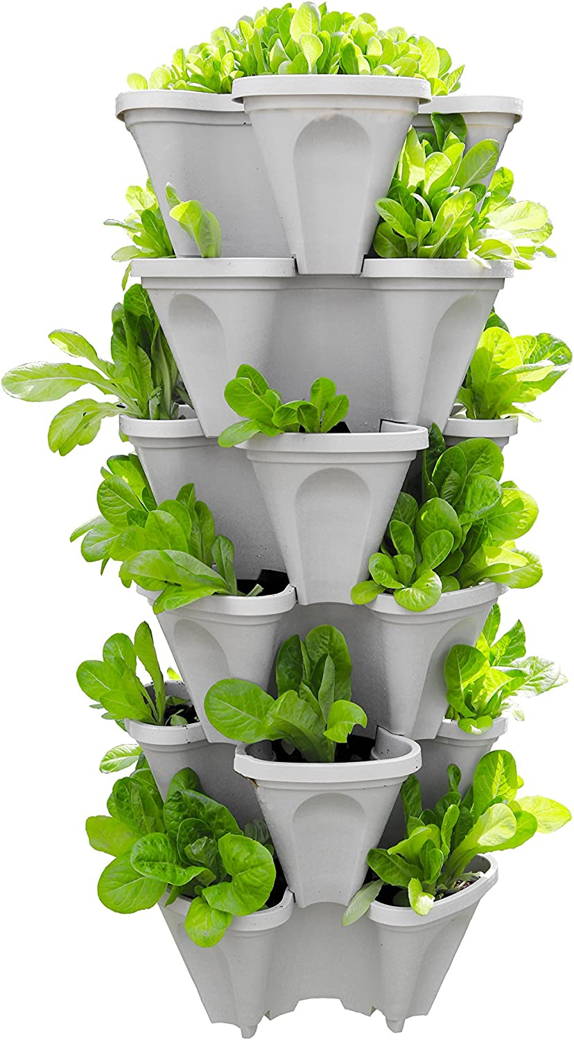 gardening hack: grow vertically to save space!