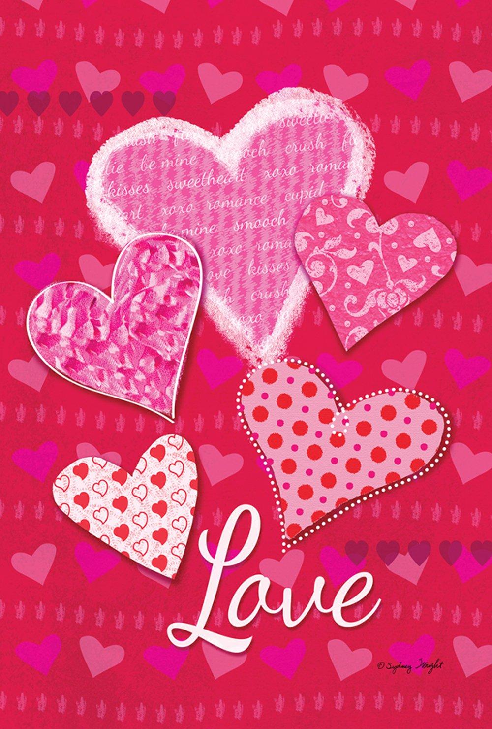 Toland Home Garden Whole Lotta Love 12.5 x 18 Inch Decorative Valentine Heart Garden Flag