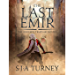 The Last Emir (Knights Templar Book 2)