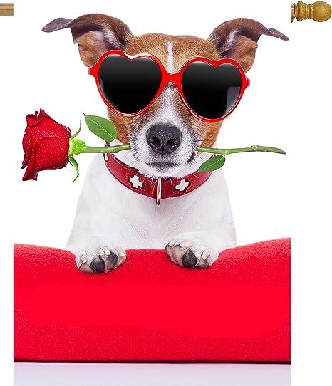 "Happy Valentine/'s Dogs House Flag Puppy Love Humor 28/"" x 40/"" Briarwood Lane"