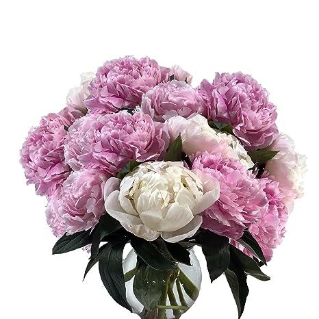 Amazon Peony Vase Premium By Plaza Flowers Fresh Flowers