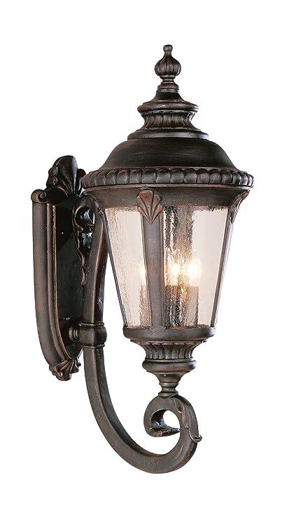 Amazon.com: Trans Globe 4-Light al aire última intervensión ...