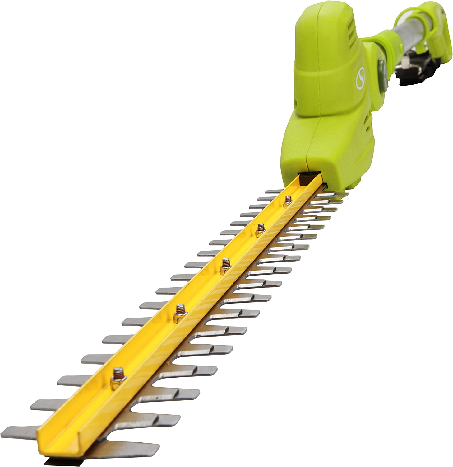 4. Sun Joe SJH901E Electric Pole Hedge Trimmer