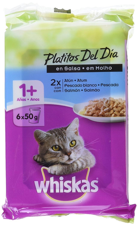 Bolsitas para Gatos Platitos Del Día Pescado En Salsa - [Pack de 12]: Amazon.es: Productos para mascotas