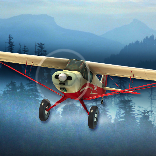Airplane Fly Bush Pilot Flight ()