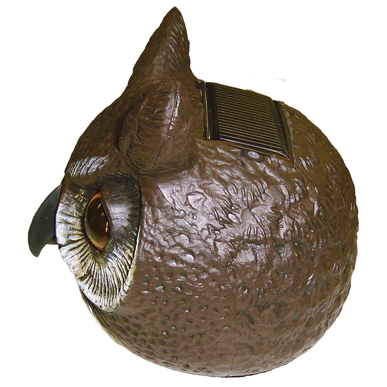 Amazon.com : Gardeneer By Dalen Natural Enemy Scarecrow SOL R Action Owl :  Home Pest Repellents : Patio, Lawn U0026 Garden