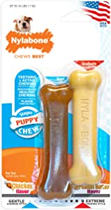 Nylabone Variety Puppy Chew Toy Twin Pack, Petite