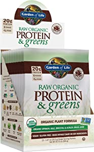 Garden of Life Raw Organic Protein & Greens Chocolate - 10 Servings (10 Packets), Vegan Protein Powder for Women & Men with Juiced Greens, 20g Plant Protein, Probiotics & Enzymes, Low Carb Shake