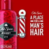 Old Spice 2 in 1 Shampoo and