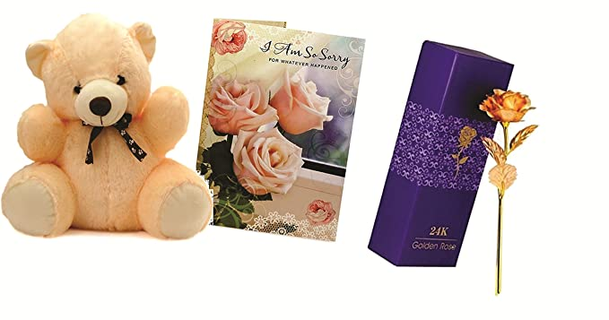 Skylofts 7inch Teddy Bear with sorry card & 24k gold rose Forgive Me gift