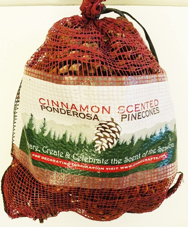 Cinnamon Scented Ponderosa Pinecones